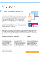 VIZOR IT Asset Management Summary